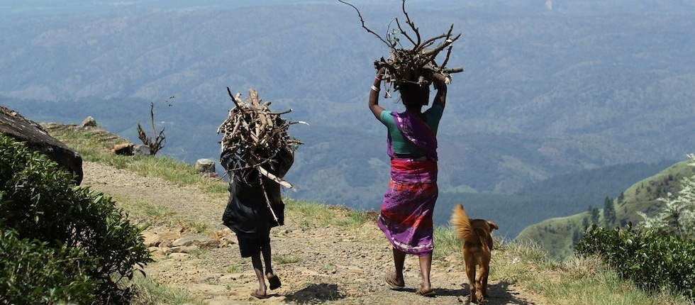 Indian mother and child carrying logs with dog alongside, by Insider Tours
